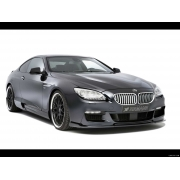 BMW Seria 6 F12 2012-in prezent